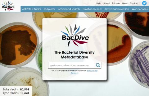 Uneingeschränkter Zugang zu mikrobiologischen Forschungsdaten bei BacDive