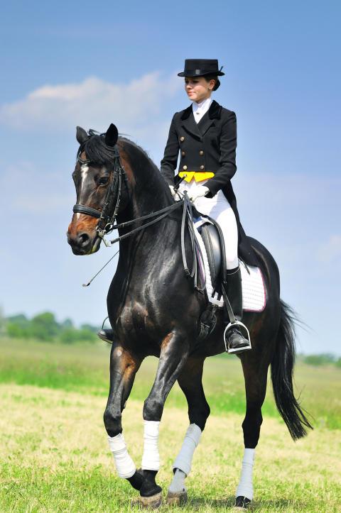 Hästfest på Tyresö slott - ridsport