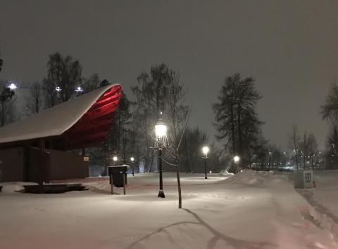 Värme och ljus i Döbelns park 19-22 januari