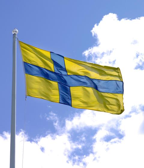 Östgötaflaggan