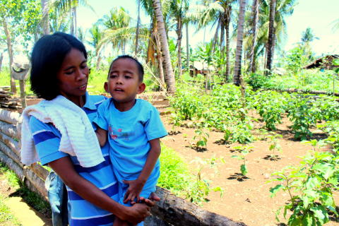 One year on from Typhoon Bopha, families still reeling from loss of livelihoods, Save the Children says.