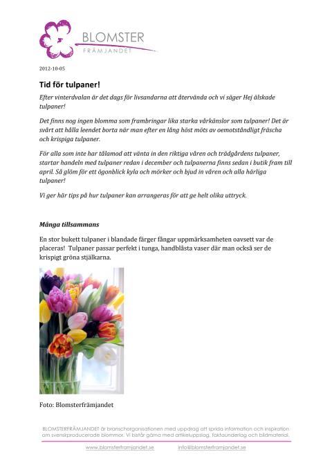 Tid för Tulpaner