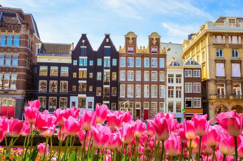 Holland lockar i vår