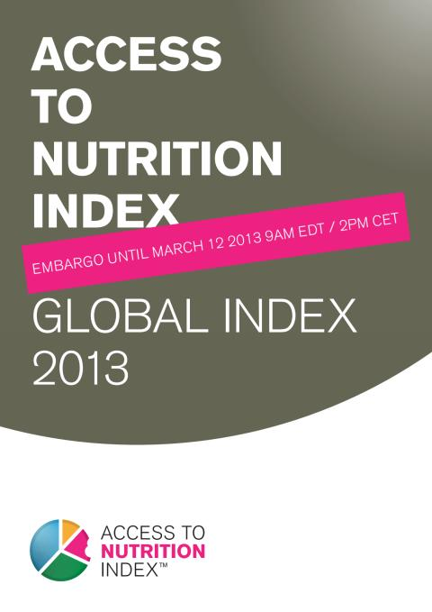 ATNI Global Index Report 2013