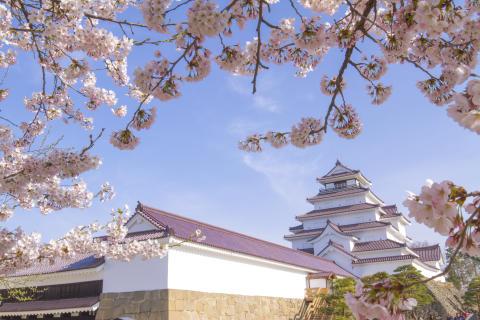 Tsurugajo Castle Park(1)