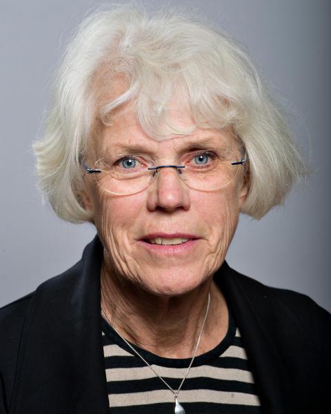 Kerstin Johnsson (S)