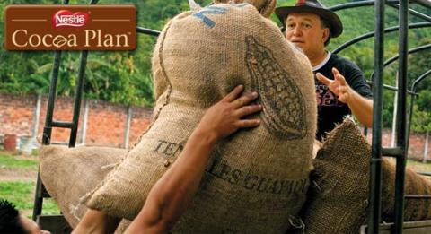 Nestlé Cocoa Plan leverer mere bæredygtig kakao