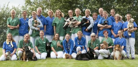 Smådjurskliniken Din Veterinär i Helsingborg är finalist i Årets Djurklinik