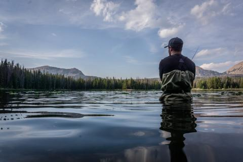 Nyd stilheden med en fiskestang i hånden