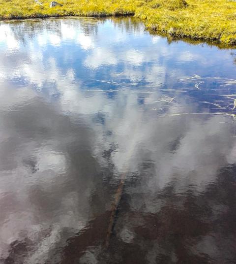 Lilla Tallsjön