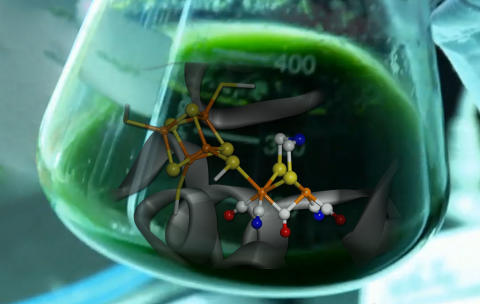 Artificiellt enzym
