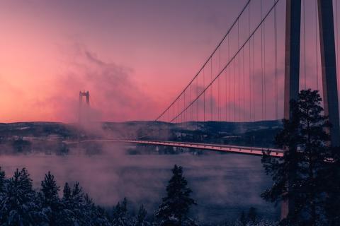 Svensk tillväxt hotad - IT-branschens uppmaning till Ygeman
