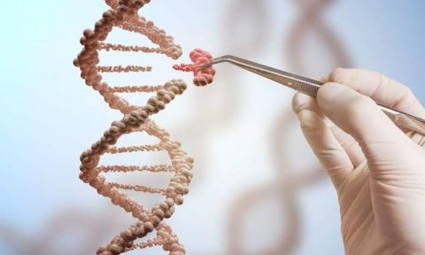 CRISPR Technology Market Analysis 2018-2027: Key Findings, Regional Analysis, Key Players Profiles and Future Prospects