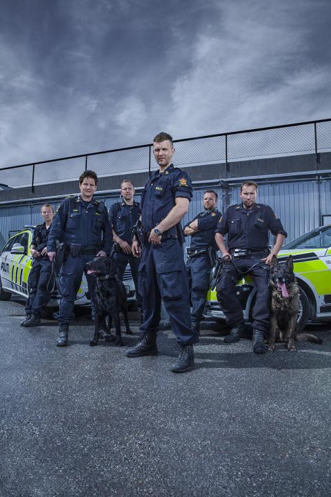 Hundepatruljen Oslo - gruppebilde 1