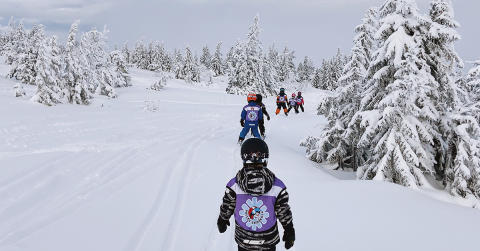 Level up on a Scandi ski holiday with SkiStar lessons and experiences, including new half day group lessons