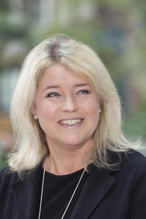 Maria Carvinge, Marknadschef
