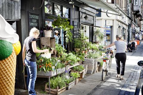 Gatelangs i København