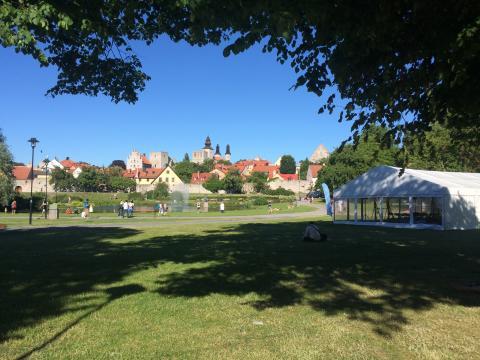 Boehringer Ingelheims aktiviteter i Almedalen 2018