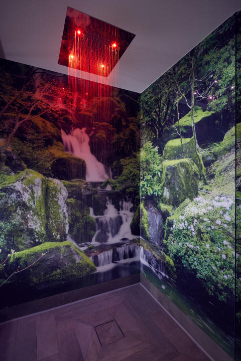 Rain Forest Shower