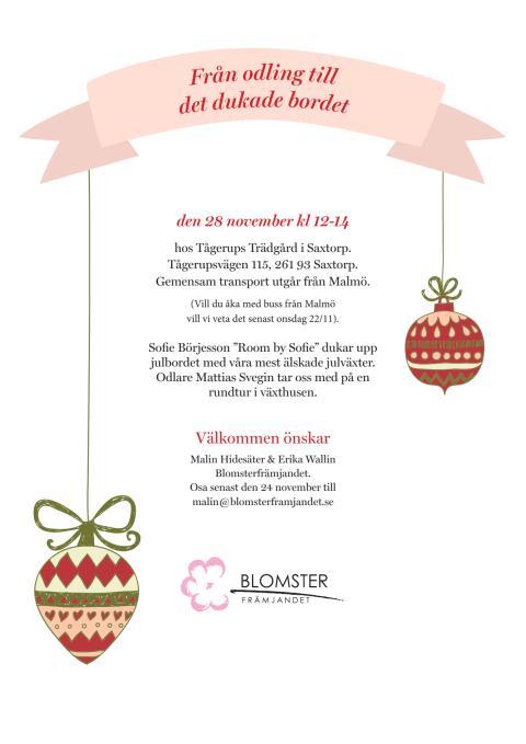 Inbjudan till julpressvisning hos Tågerups Trädgård