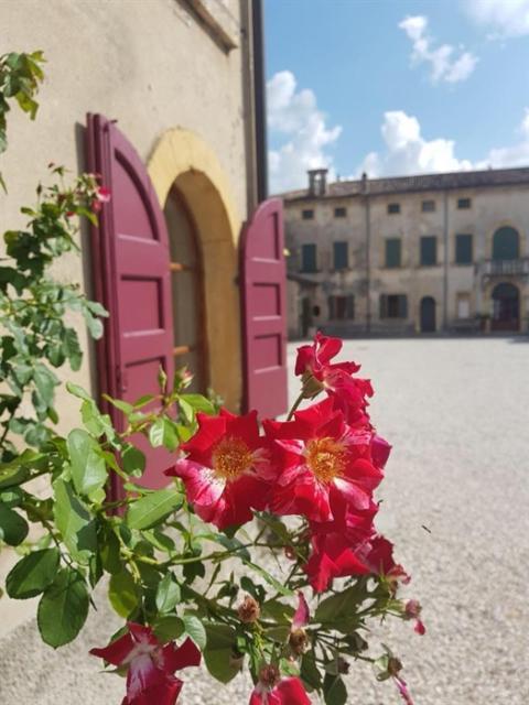Upptäck Italien - Verona, Valpolicella och Gardasjön