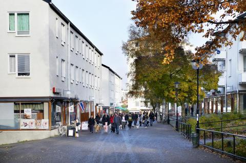 Miljö- och beteendeprojekt i Hökarängen