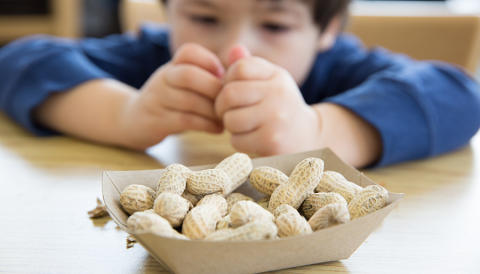 New partnership to develop treatment for peanut allergies