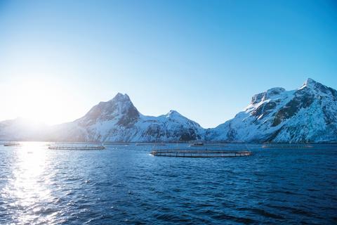 Vor über 40 Jahren entstand die erste Aquakulturanlage in Norwegen. Die lange Erfahrung und die Zusammenarbeit von Fischerei, Wissenschaft und Staat machen Norwegen heute zum internationalen Vorreiter in der nachhaltigen Lachszucht.