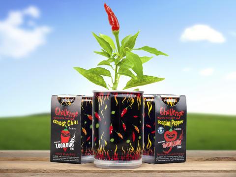 Chilimania – Kasvata chiliä