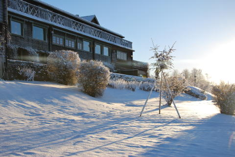 Green Hotel vinter
