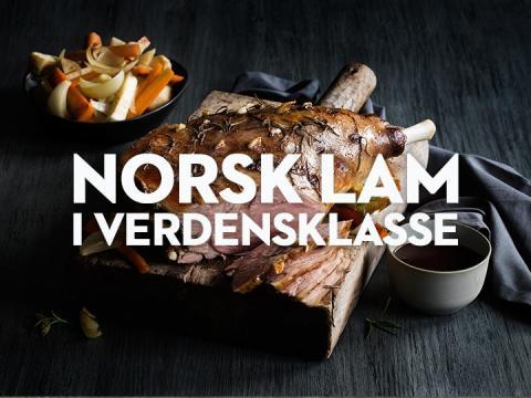 Sokeordsbilde-Norsk-lam-i-verdensklasse-MP6696