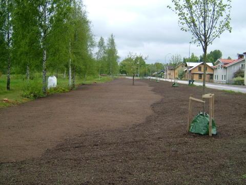 Nationaldagsfirande med invigning av järnvägsparken i Glasbyn Målerås