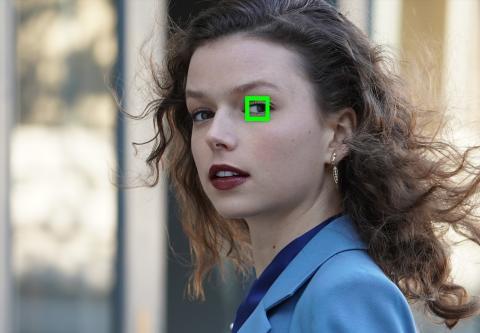 Sony Eye AF