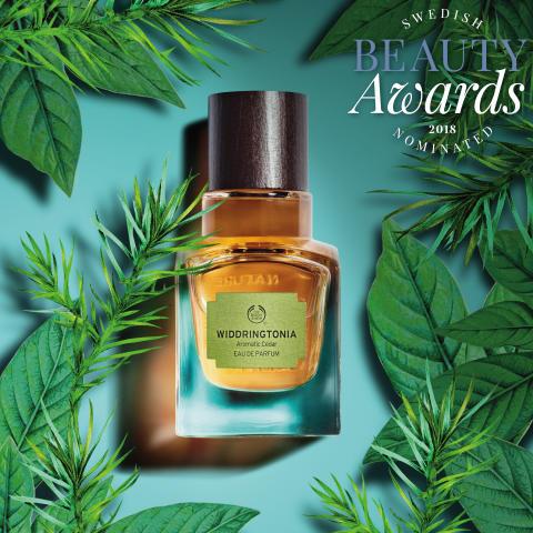 Swedish Beauty Award_nomineringar 2018_1
