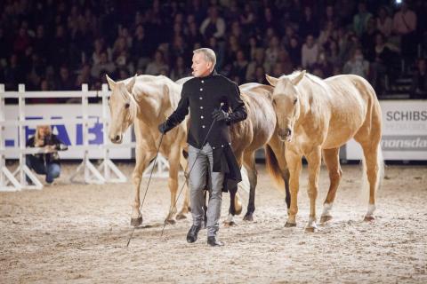 Turnépremiär för Tobbe Larsson populära hästshow med stjärnhästarna Nicke & hans vänner!