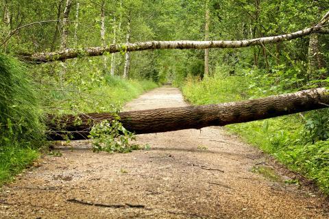Unwetterschäden erschweren Stromversorgung