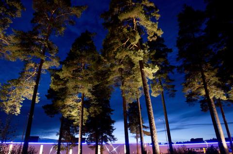 Outdoor Lighting Solutions