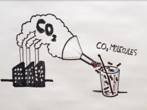 Koldioxidmolekyler