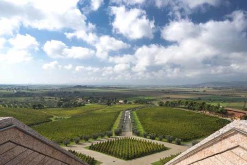 Petra Wines, Italien. Utsikt från taket på vingården.