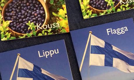 Mer finskt på biblioteken - fira på fredag!