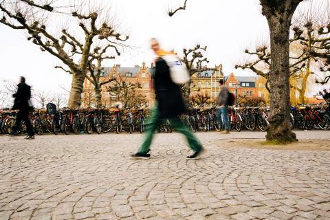 Flytt och ny organisationsstruktur stärker Sveland Djurförsäkringar inför framtiden