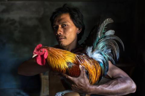 Rubén Salgado Escudero, Profesional en la categoría Retratos