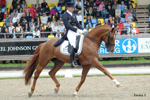 Ryttare klara för World Dressage Masters i Falsterbo