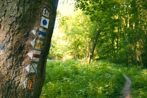 Wanderbares Thüringen