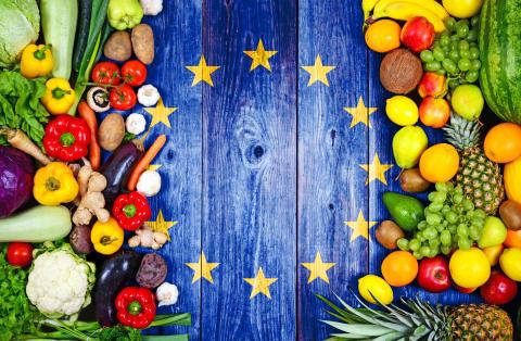 Hur viktigt är livsmedelssäkerhet?