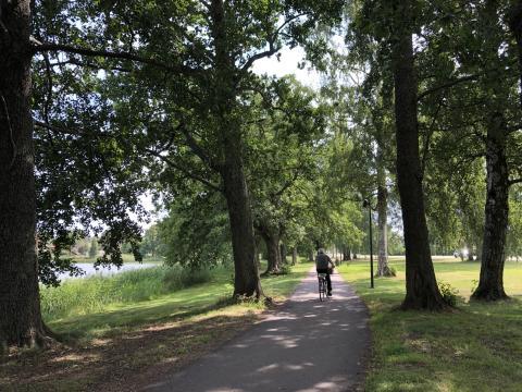 Karlstadsbor ska hjälpa till att förbättra Karlstads parker