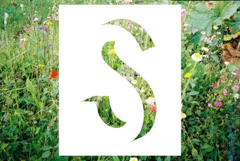 Design S öppnar på ArkDes 12 oktober