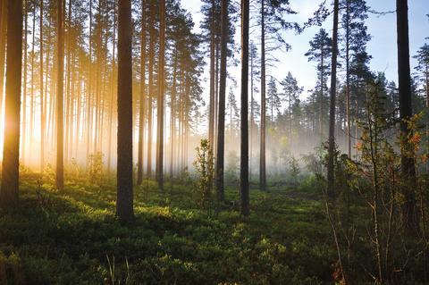 Växjö Energi lyfter miljöhjältar
