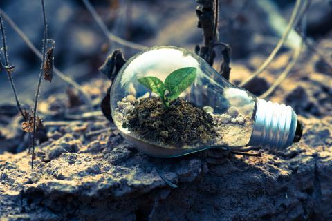 Fel att göra förbränning av fossil plast till Sveriges miljövänligaste energialternativ