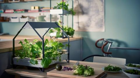 Live more sustainably with IKEA